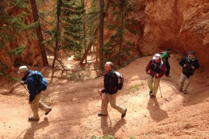 National Park HIKING TOURS | Timberline Adventures : Fully supported guided hiking and cycling tours through Bryce and Zion National Parks.  Committed to adventure for over 35 years – we know adventure!