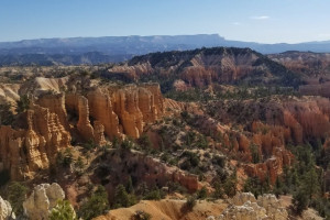 Timberline Adventures | Hiking Tour packages