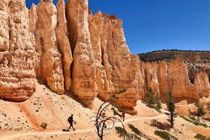 Bryce Canyon day hikes | Wildland Trekking
