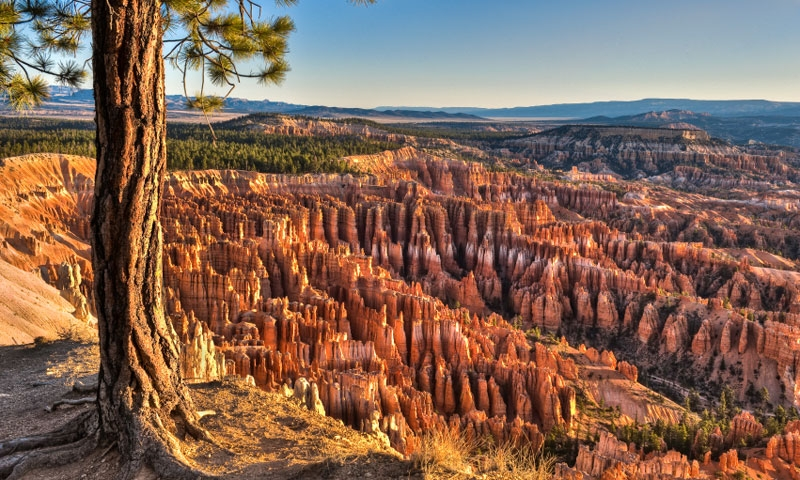Bryce Canyon National Park Tourism Attractions Alltrips