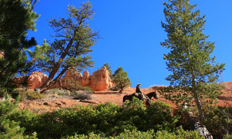 Horseback Riding through Bryce Canyon