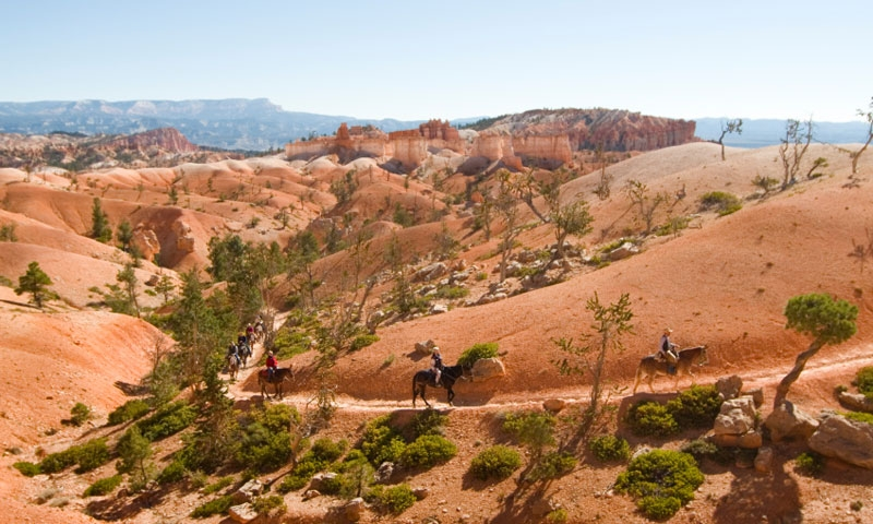 Horseback Riding in Bryce Canyon National Park
