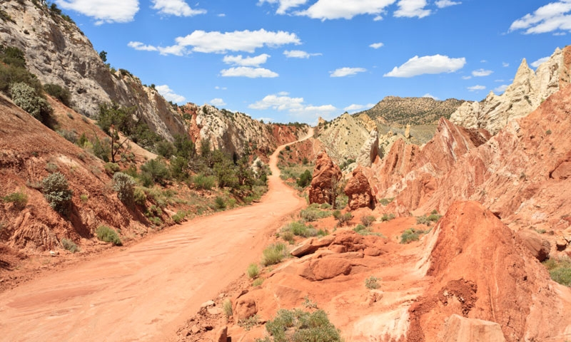 Bryce Canyon National Park Atv Rentals Jeep Tours