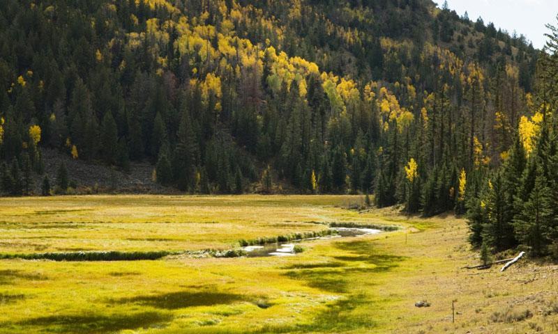 Boulder Mountain Utah Alltrips