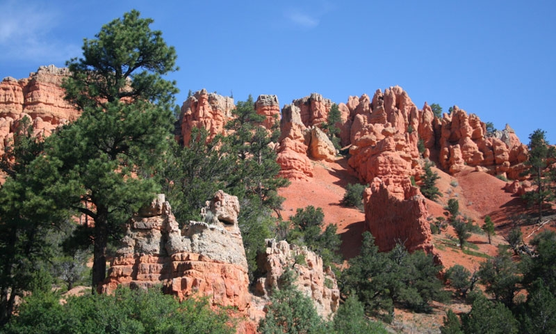 Red Canyon of Dixie National Forest