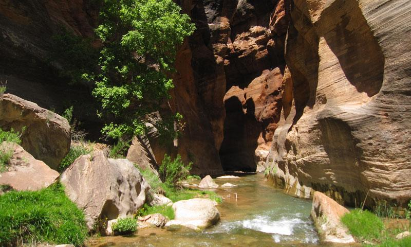 Hiking down the East Fork of the Virgin River near Zion