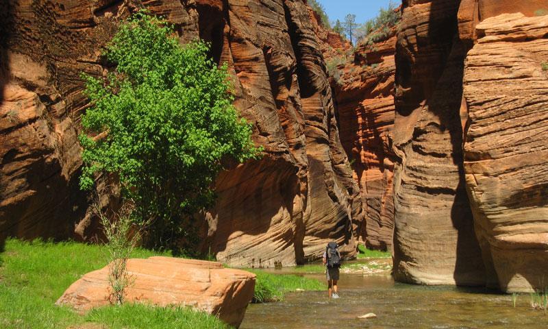 Hiking East Fork Virgin River Utah