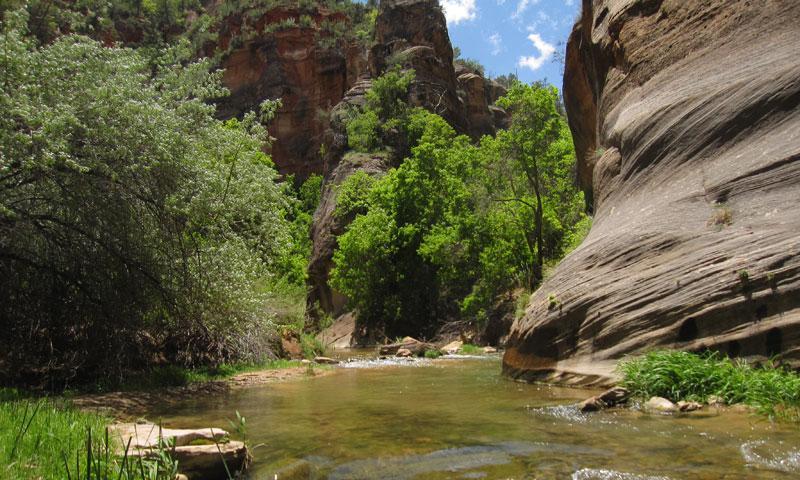 East Fork Virgin River Utah Hiking Trail