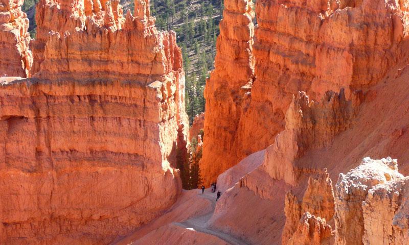 Hiking the Navajo Loop Trail in Bryce