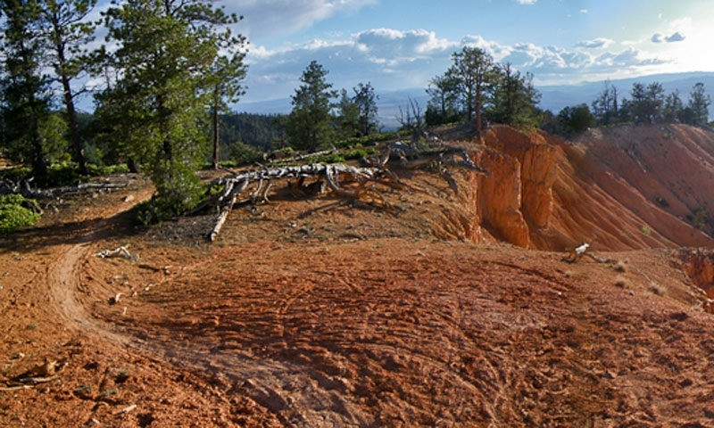 home landslide near bryce canyon leave