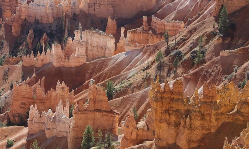 Amphitheater Trail Bryce Canyon