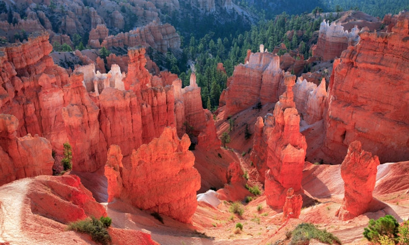 Hoodoos and Hiking Trail in Bryce Canyon National Park